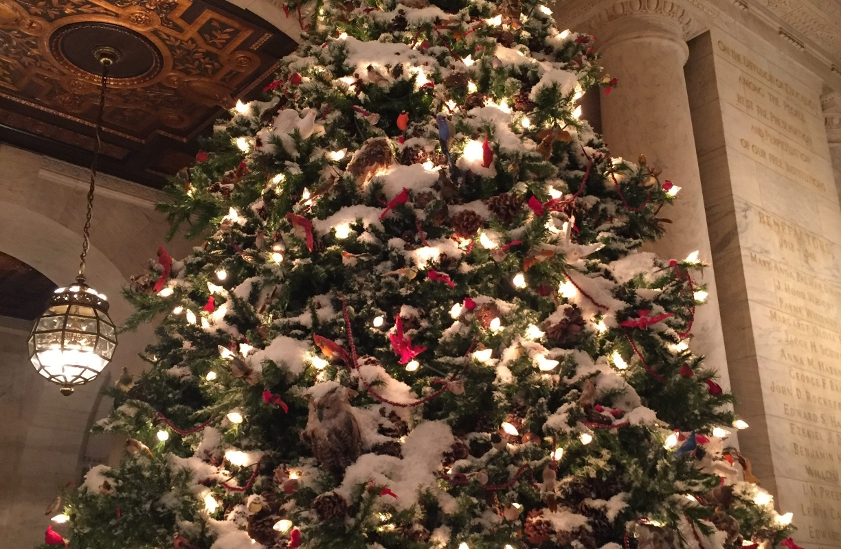 Must See's and Things to Do During Christmas in NYC