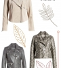 Shopping: Fall Jackets